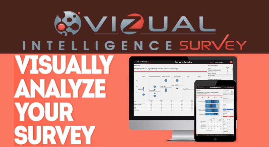 Vizual Intelligence Survey